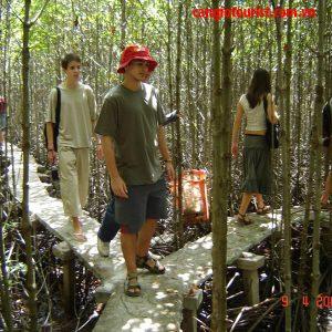 Tour du lịch Rừng Sác Cần Giờ