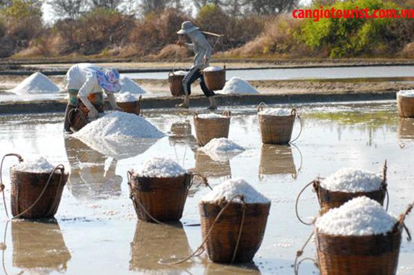 tham quan ruộng muối Cần Giờ 1 ngày