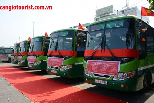 hướng dẫn đi Đảo Khỉ Cần Giờ bằng xe buýt