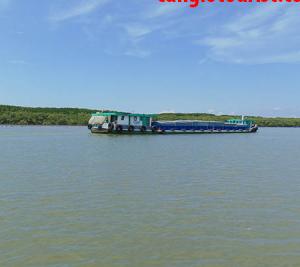 Đi Cần Giờ từ Bến tàu du lịch đường sông – Trải nghiệm khác biệt